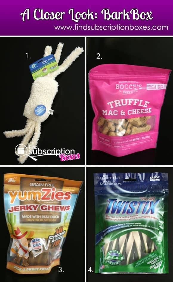 November 2013 BarkBox Pet Subscription Box Review