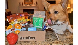 Save 10% Off All Barkbox Subscriptions with code FSB10X