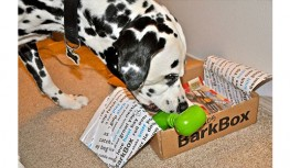 Save $10 Off BarkBox Subscriptions with Code FSB10X