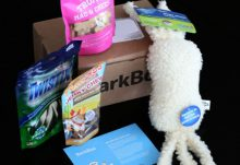 November 2013 BarkBox subscription box review