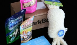 A Closer Look: November 2013 BarkBox Review – Dog Subscription Box