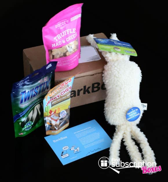 November 2013 BarkBox subscription box review