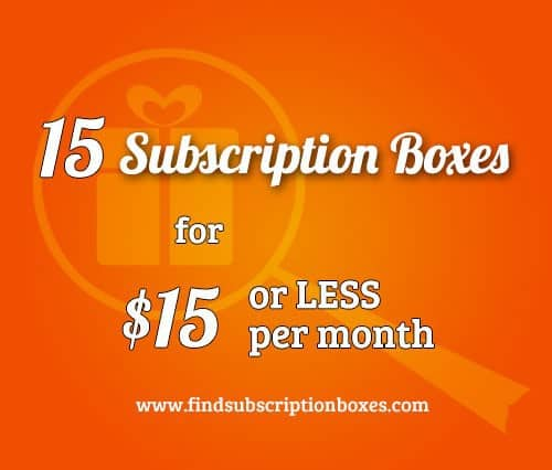 15 Subscription Boxes You Can Subscribe to for $15 or Less