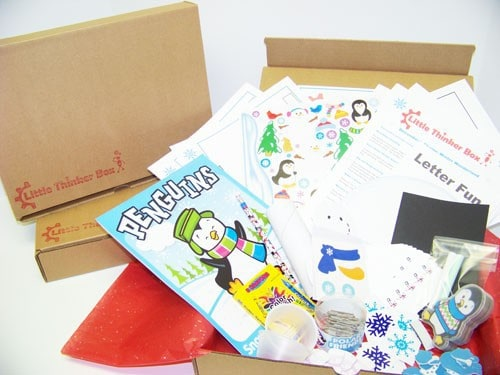 Little Thinker Box Monthly Kid's Subscription Box