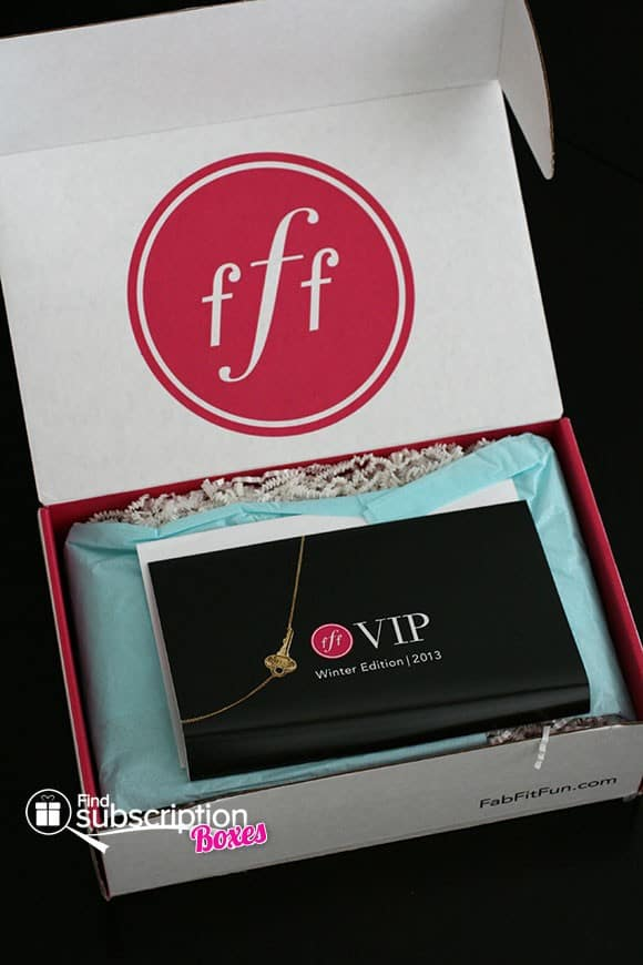 Winter 2013 FabFitFun VIP Box Review - First Look