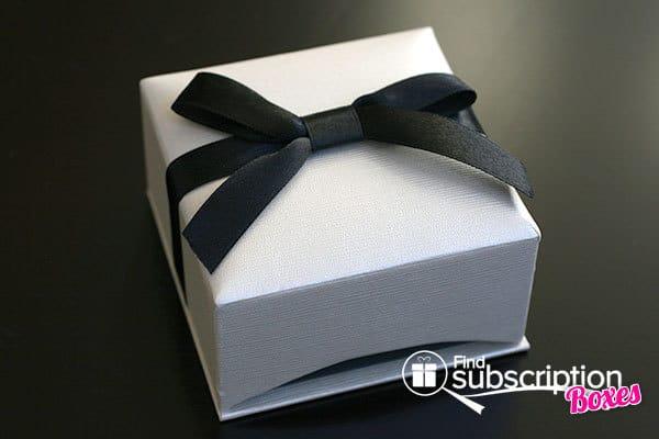 February 2014 Cate & Chloe VIP Box Review - Jewelry Box