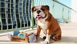 Save 32% off BarkBox Subscriptions with code MM32PCT32214