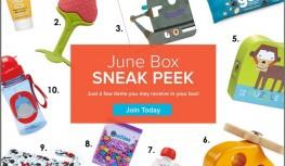 June 2014 Citrus Lane Box Spoilers