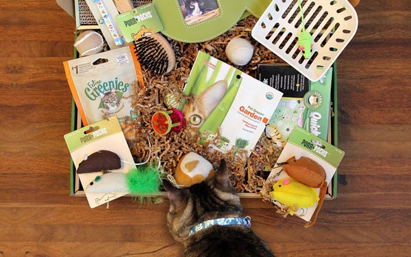 Purr-Packs Subscription Box for Cats