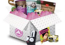 Spoiled Rotten Box Subscription Box for Dogs or Cats