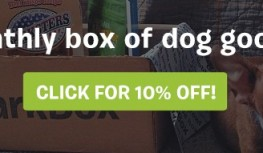 Save 10% Off BarkBox Subscriptions with Code OPMCJ10PCTOFF