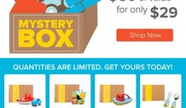 New June Citrus Lane Mystery Boxes Now Available!