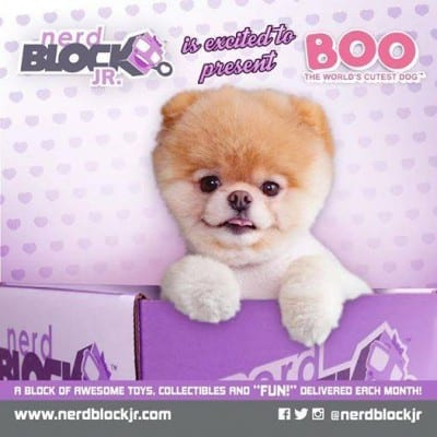 November 2014 Nerd Block Jr. Girls Box Spoiler - Boo