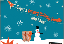 Groovy Lab in a Box Groovy Holiday Bundle