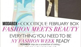 COCOTIQUE February 2015 Box Spoilers