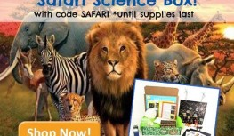 Save 25% Off the Green Kid Crafts February Safari Science Discovery Box with Code SAFARI