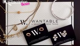 Wantable Accessories January 2015 Box Review – Jewelry Subscription Box