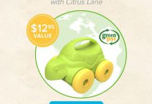 Citrus Lane Free Green Toys Gift