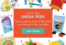Citrus Lane June 2015 Box Spoilers