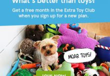 BarkBox Free Month Extra Toy Club