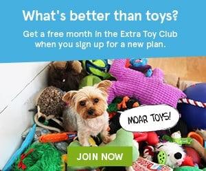 BarkBox Free Month Extra Toy Club