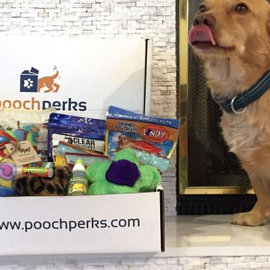 Pooch Perks-For the Mom with Dogs