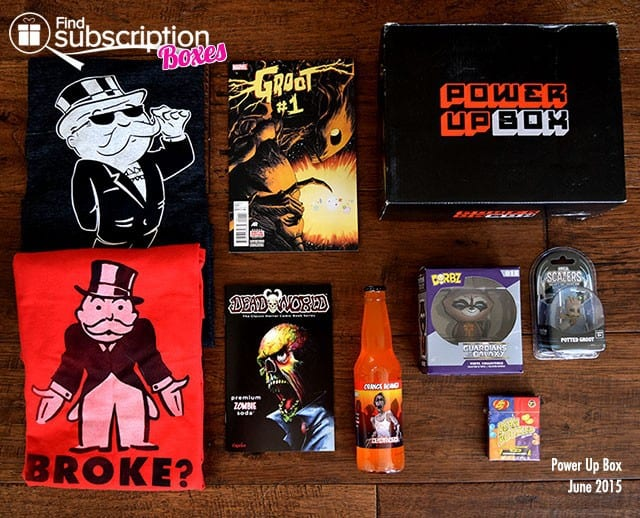 Power Up Box June 2015 Box Review - Box Contents