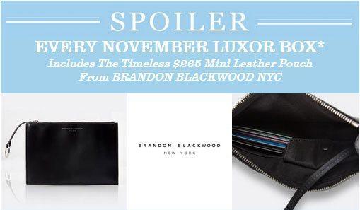 November Luxor Box Spoiler - Brandon Blackwood Mini Leather Pouch