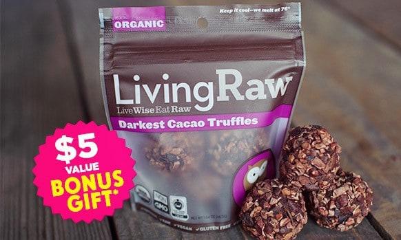 Vegan Cuts February 2016 Snack Box Bonus Gift