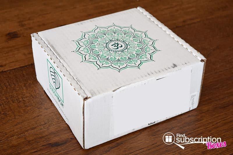 February 2016 BuddhiBox Review - Box