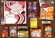 April 2016 MunchPak Review - Box Contents