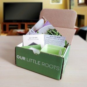 Our Little Roots - For the Mom with a Green Thumb