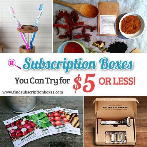 Affordable Subscription Boxes You Can Try For $5 OR LESS!