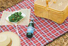 June 2016 GlobeIn Artisan Picnic Box Spoiler - Peace Picnic Blanket
