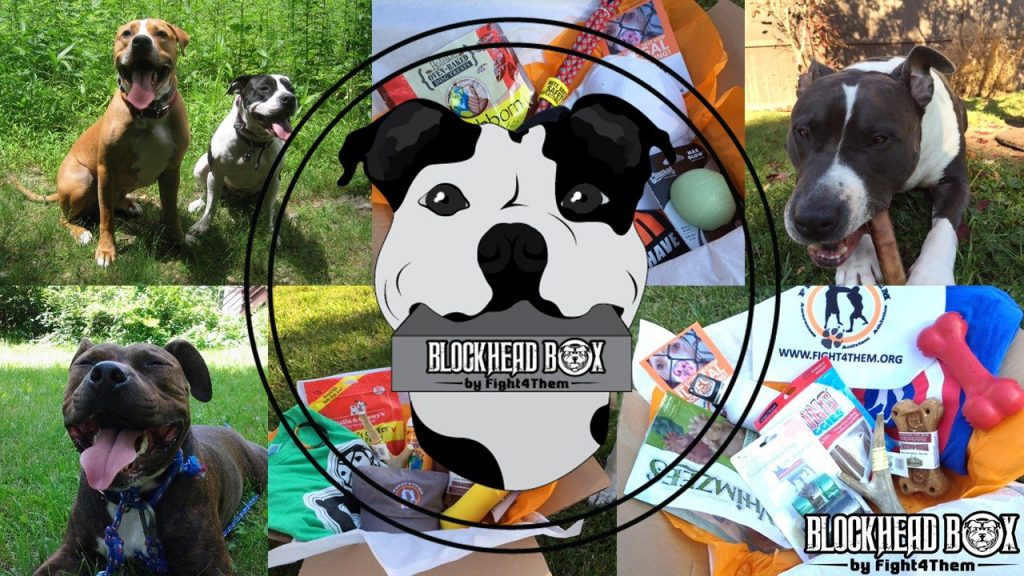 Blockhead Box Dog Subscription Box