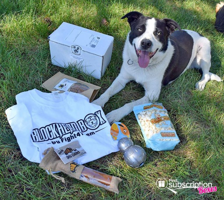 July 2016 Blockhead Box Review - Box Contents