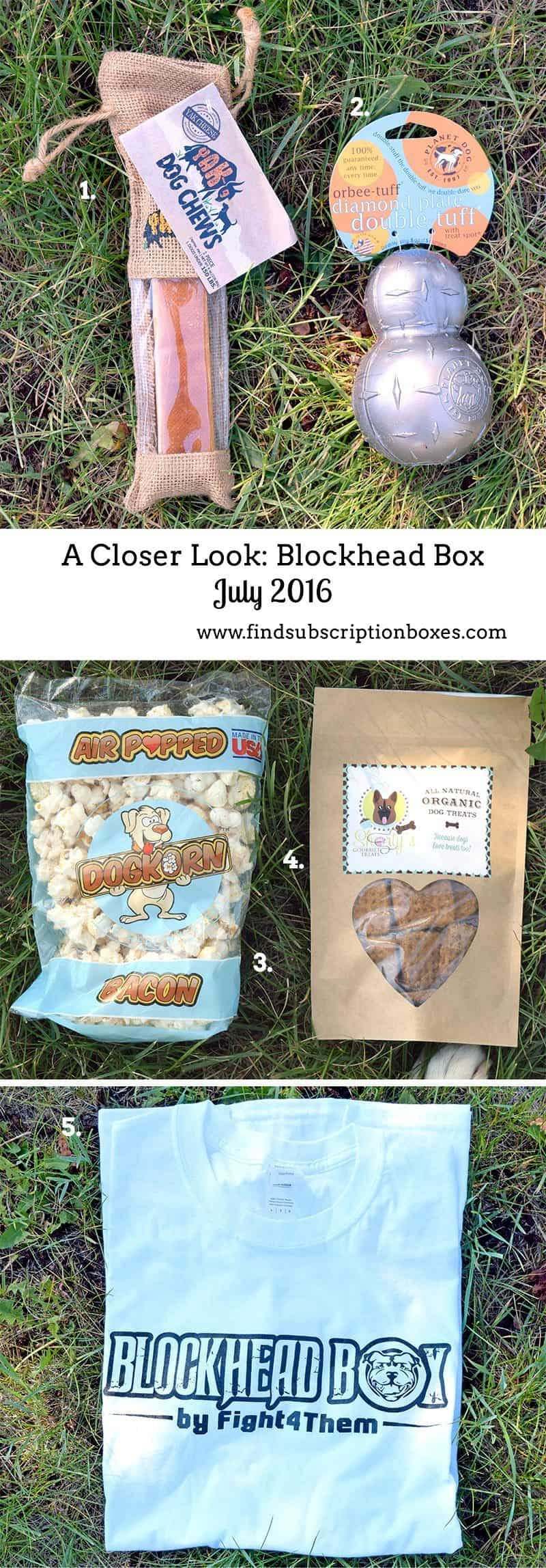 July 2016 Blockhead Box Review - Inside the Box