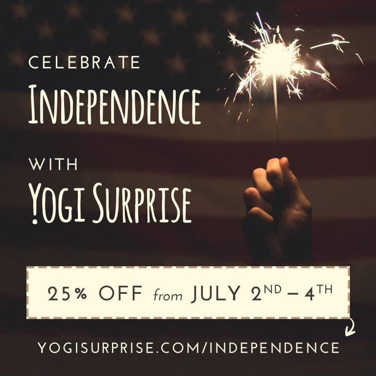 Yogi Surprise 4th of July Sale
