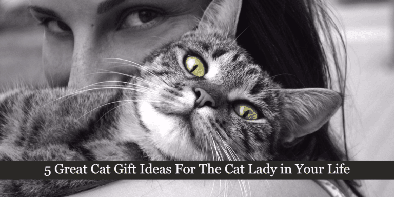 5 Great Cat Gift Ideas For The Cat Lady in Your Life