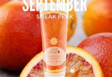 September 2016 Pampered Mommy Box Spoiler - 100% Pure Shower Gel
