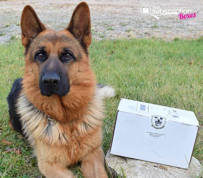 August 2016 Blockhead Box Review - Box