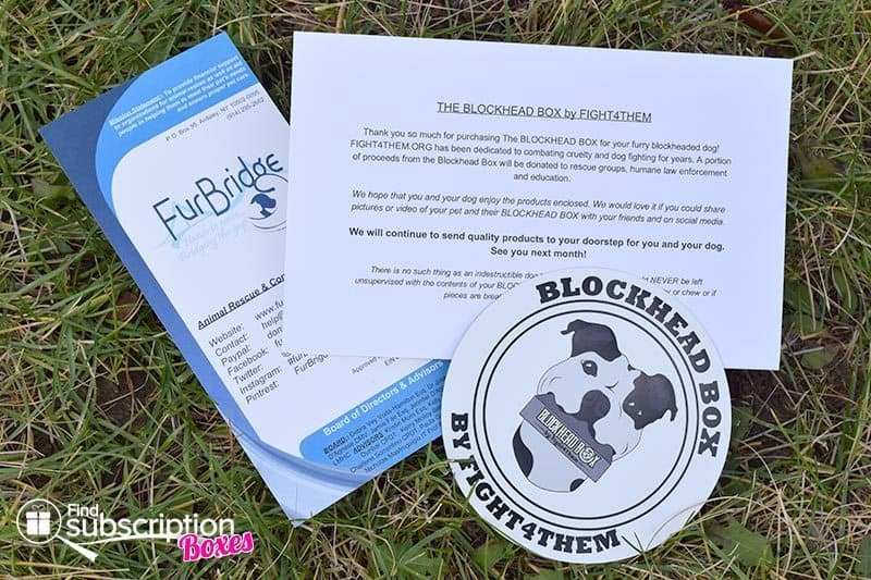 August 2016 Blockhead Box Review - Flyers