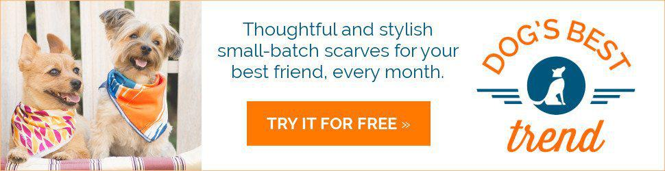 Dog's Best Trend Free Scarf Offer