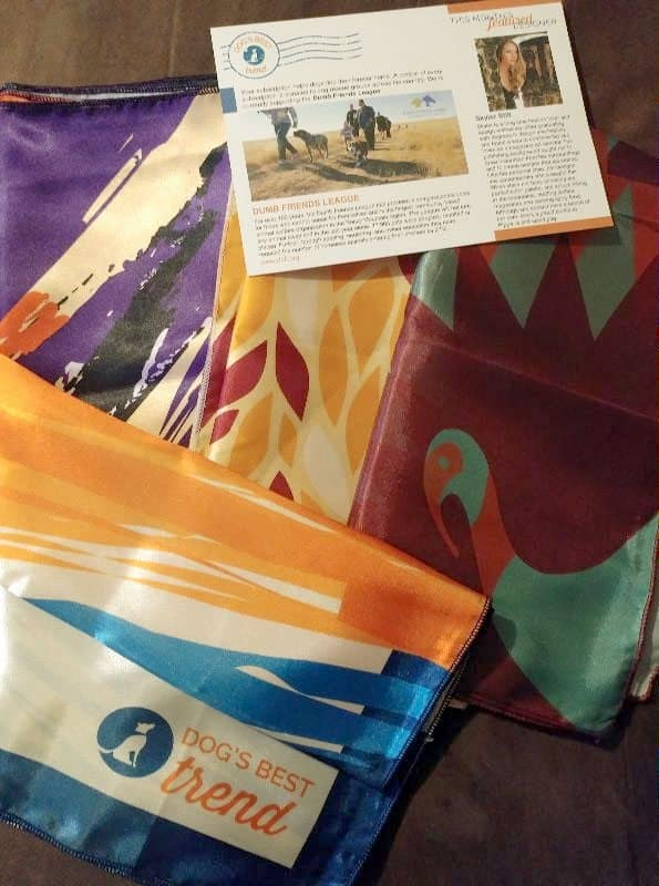 November 2016 Dog's Best Trend Review - Inside the Box