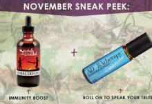 November 2016 Goddess Provisions Box Spoilers