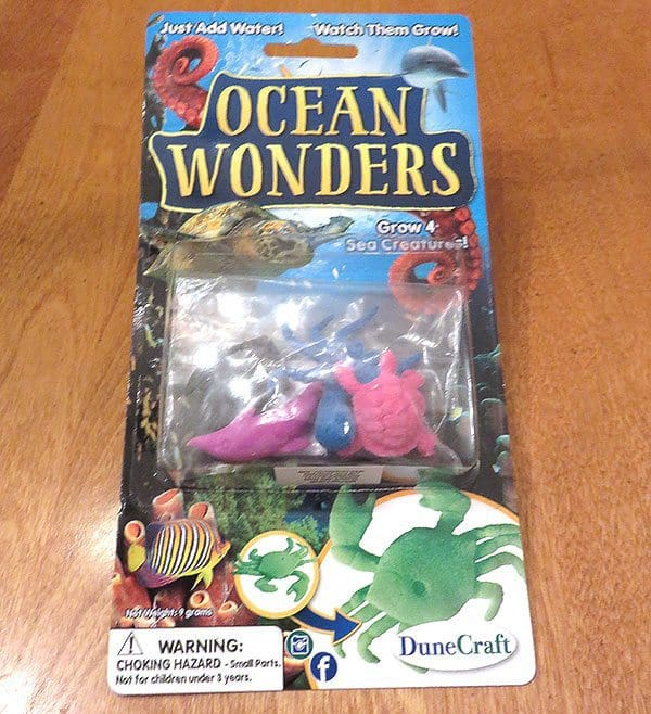 January 2017 Nerd Block Jr. for Boys Review - Ocean Wonders