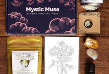 June 2017 Mystic Muse Review - Box Contents