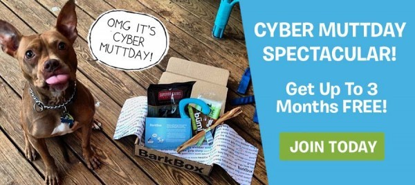 BarkBox Cyber Monday