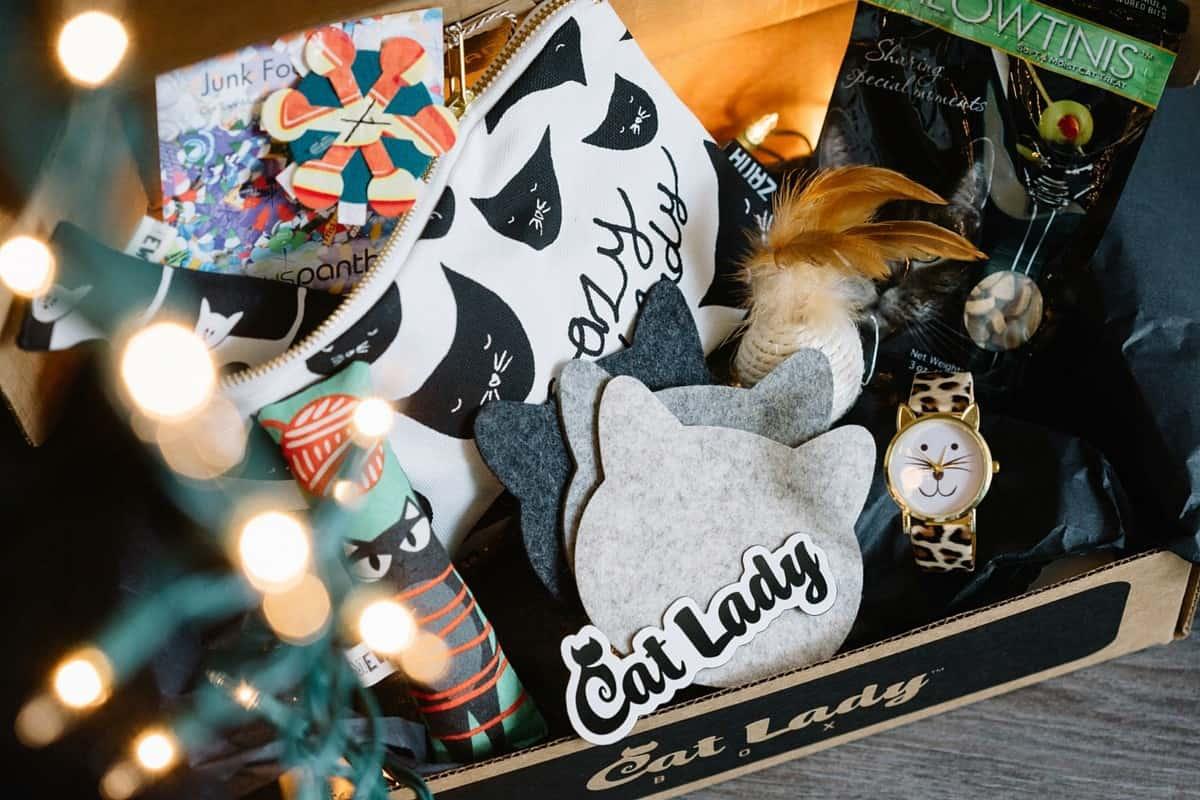 catladybox-1