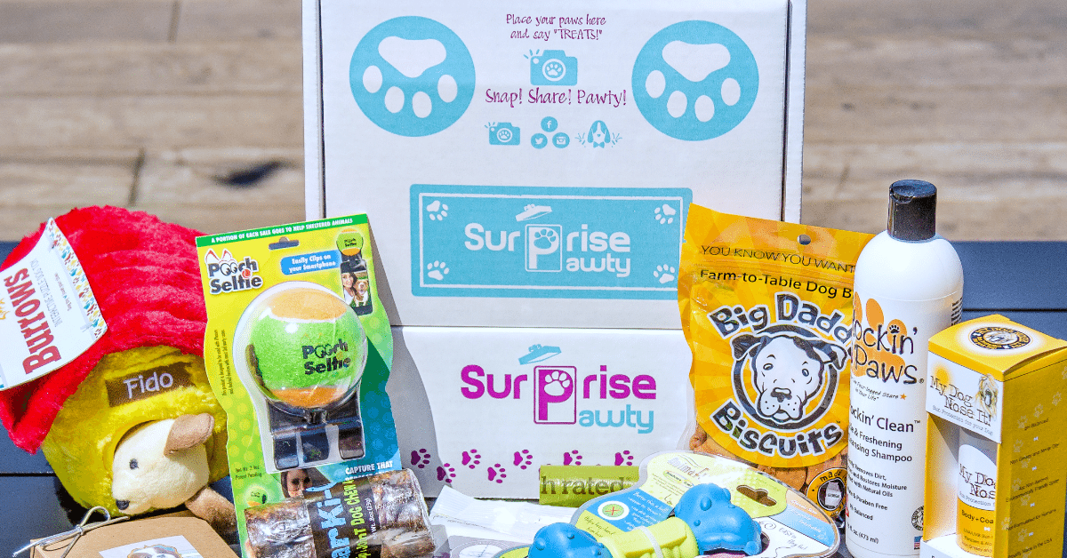 Surprise Pawty Subscription Box